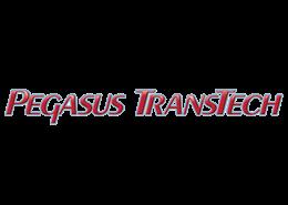 pegasus-logo-slide